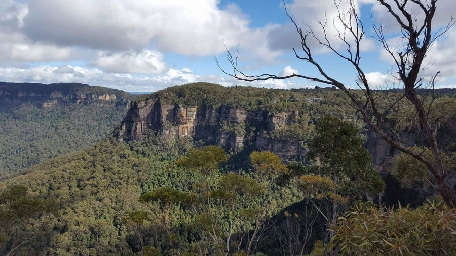 The Blue Mountains are a must see on any trip to Australia. Take a look at this guide to help you plan your visit to the stunning Blue Mountains. #bluemountains #australia #bluemountainslookouts #leura #wentworthfalls #katoomba #blackheath
