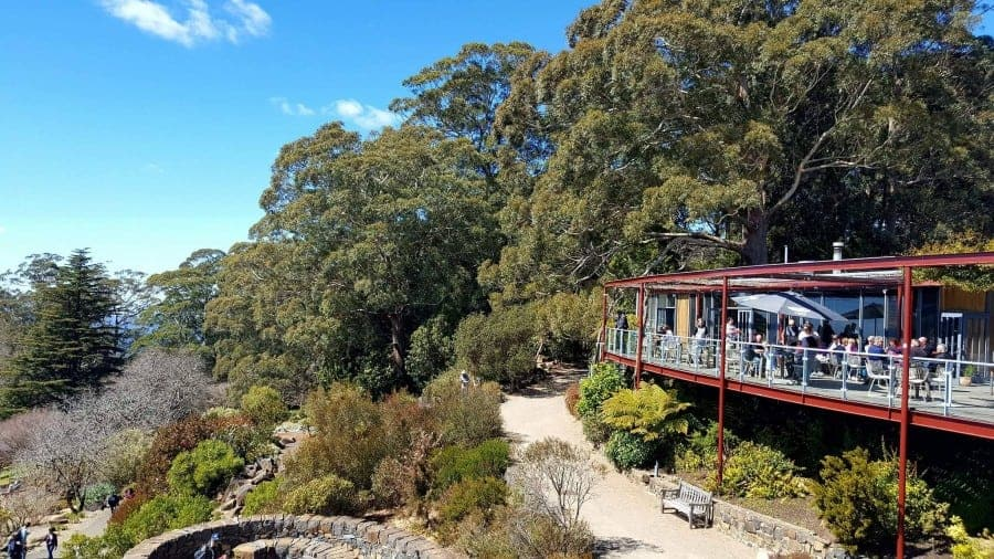 Revised Edition! The Blue Mountains are a must see on any trip to Australia. Take a look at this guide to help you plan your visit to the stunning Blue Mountains. #bluemountains #australia #bluemountainslookouts #leura #wentworthfalls #katoomba #blackheath #megalongvalley