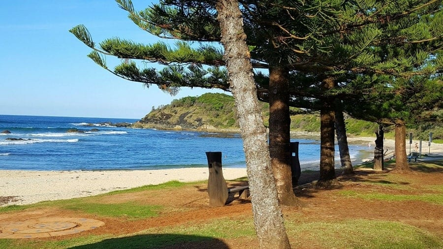 Taking time out to visit Port Macquarie, a lovely seaside town in New South Wales, Australia