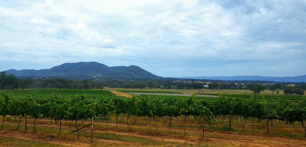 Mudgee, located in the mid west of NSW, is a food and wine mecca.