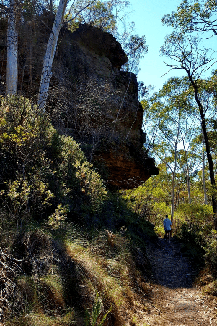 I hiked the Popes Glen Track in Blackheath, Blue Mountains with my son. Geez is he bossy!
