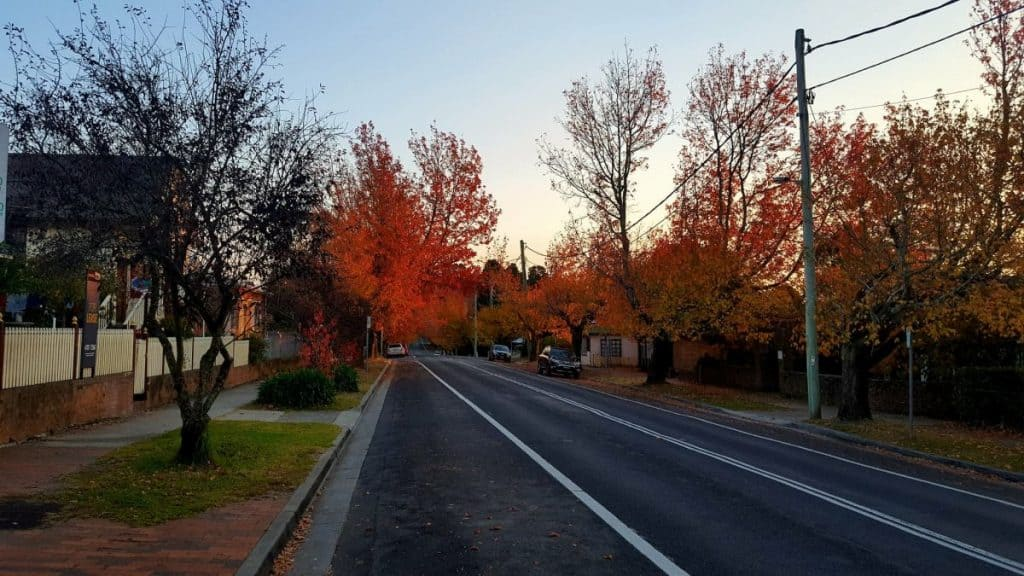 Glorious displays of colour are found everywhere in Blackheath in the Blue Mountains, Australia. #bluemountains #australia #autumncolours #blackheath #fallcolors