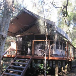 Our weekend experience Glamping.