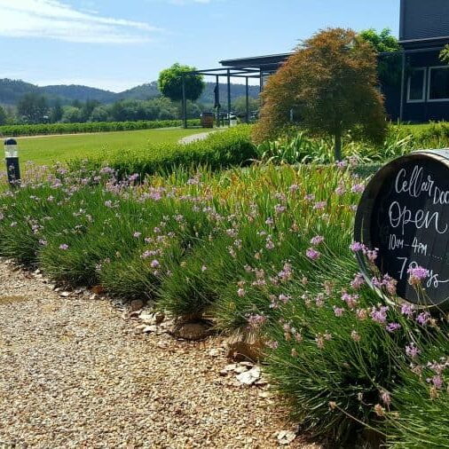 Mudgee, located in the mid west of NSW, is a food and wine mecca. #australia #mudgee #mudgeewines #winetasting
