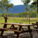 5 Cafes you should try on a trip to the Blue Mountains, Australia. All are great for breakfast, lunch and morning tea. And we have included gluten free and dairy free options. Plus more cafes worth mentioning. #bluemountains #australia #cafes #bluemountainscafes