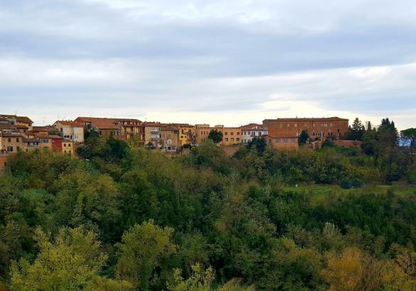 On the last three weekends of November, the Tuscan town of San Minato hosts a truffle festival, showcasing the white truffles that grow in the area. #whitetruffle #taratufo #sanminiato #tuscany #italy